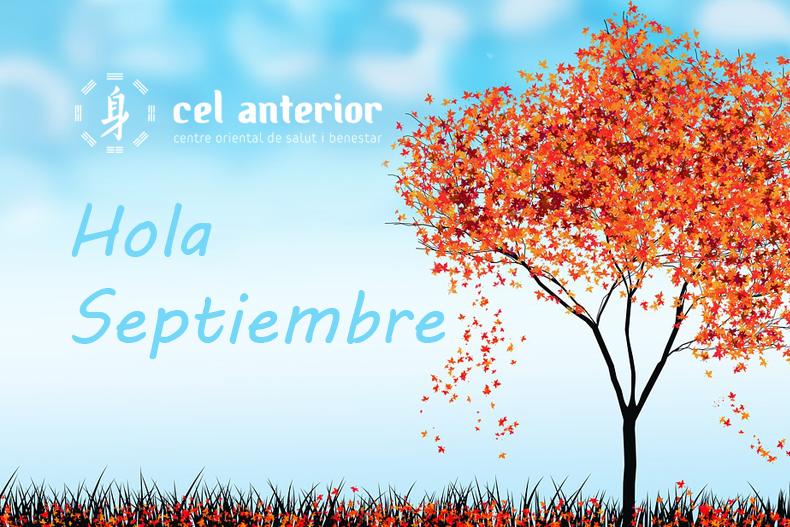 cel_anterior_hola_septiembre